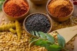 Herbal Medicine: What is it?